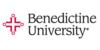 Logo Benedictine University College of Business