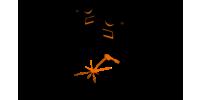Autogeen Lassen NIL niveau 2