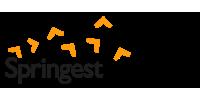 Logo Springest Intra-entreprise