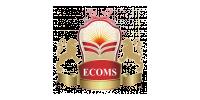Logo Essex College of Management & IT