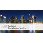 Thumbnail training jaarrekening analyse