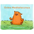 Thumbnail online meditatiecursus bl c500x375