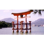 Thumbnail csm ikt japan 4119051005