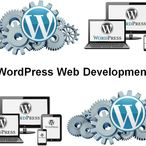 Square php600 wordpress web development