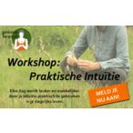 Thumbnail workshop poster praktische intuïtie