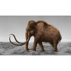 Thumbnail resurrecting extinct creatures photoshop 2051 v1